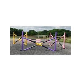 Combi Course (4 Fence) with Practice (lightweight) Pole Choice