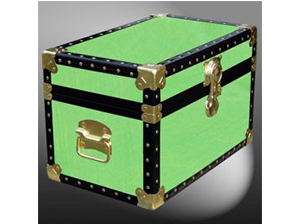 Customisable Storage Trunk